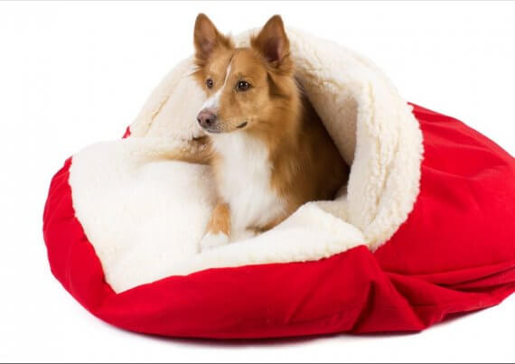 Snoozer Luxury Cozy Cave Extra Large Red