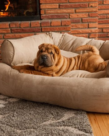 Snoozer Pet Products – Luxe Overstuffed Sofa Hondenbed – Peat