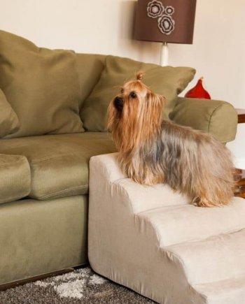 Snoozer Orthopedic Dog Beds & Ramps