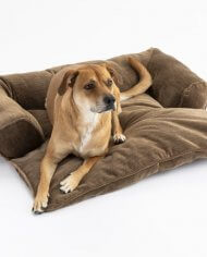 Doggy-Daybed-Support-Bolsters-Image2
